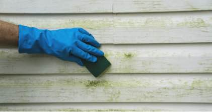 Person cleaning stained siding