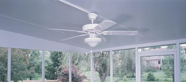 Champion sunroom fan with light