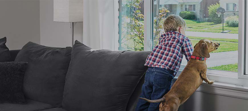 Child and dog looking out window