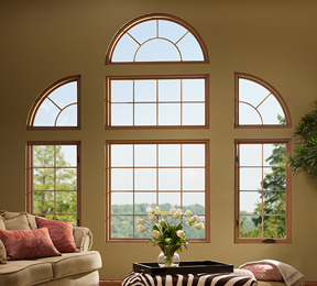 Shaped Window Example