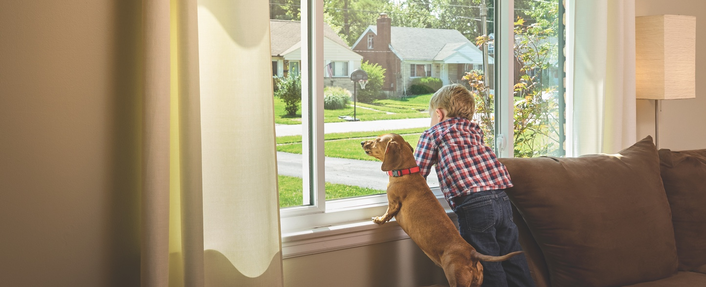 Child and dog looking through windows