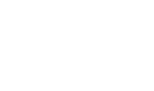 Your Whole Project for $4000